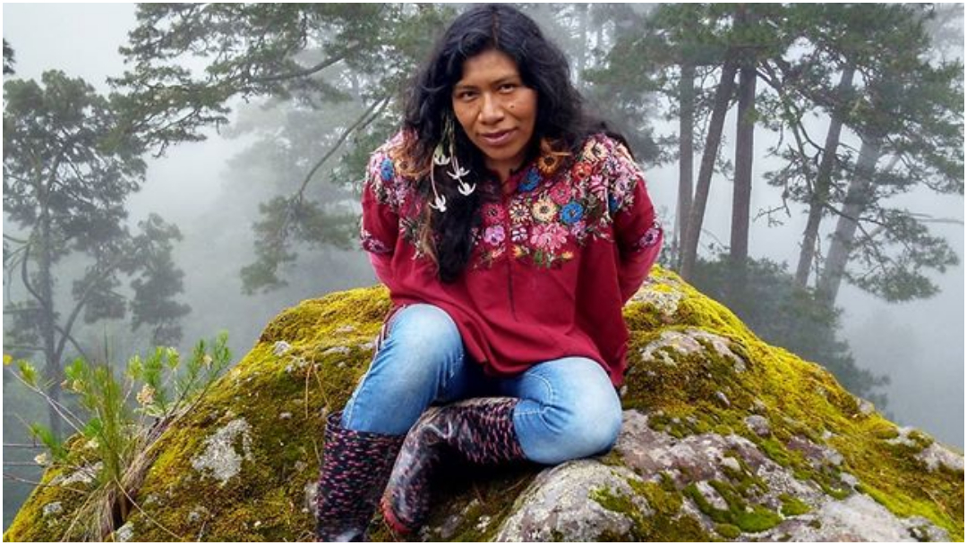 Localizan viva a la ambientalista Irma Galindo
