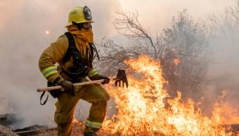 Foto: Las llamas que consumen el condado Sonoma obligaron el desalojo de más de 180 mil personas, 1 de noviembre de 2019 (AP)