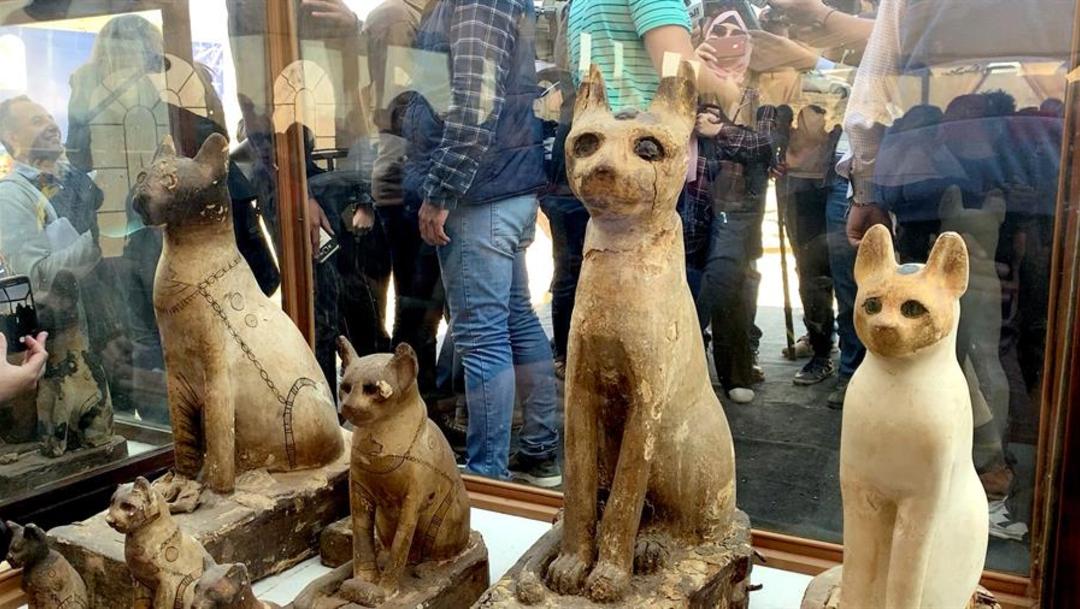 Foto: Para los antiguos egipcios los gatos y los escarabajos eran sagrados, estos últimos considerados un amuleto de vida, 23 de noviembre de 2019 (EFE)
