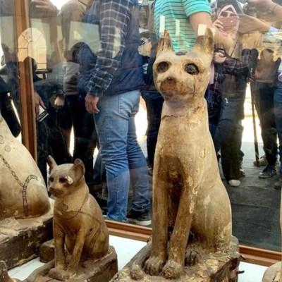 Egipto presenta momias de animales, entre ellas cachorros de león