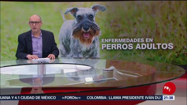 Foto: Hora 21 Julio Patán Programa Completo 22 Noviembre 2019