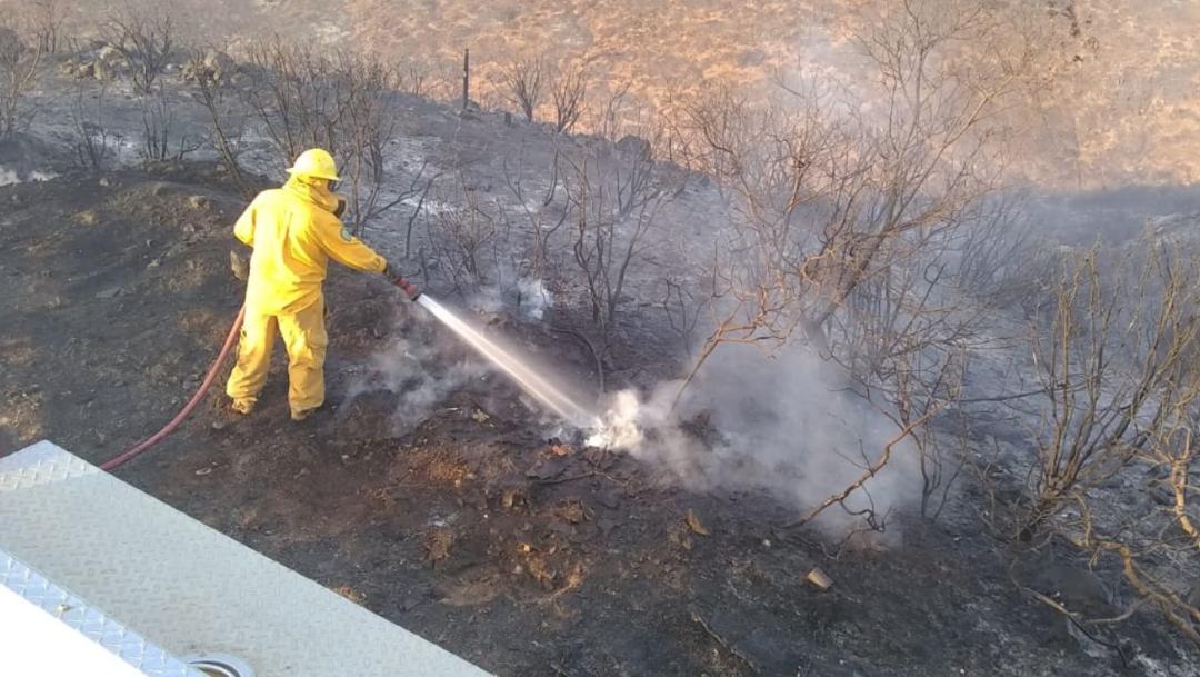 Foto: La Comisión Nacional Forestal dio a conocer que no hay incendios activos en Baja California, 3 noviembre 2019