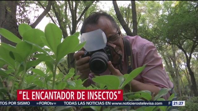 Foto: Encantador Insectos Jesús Peña Fotografo 28 Noviembre 2019