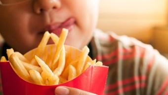 Imagen: Confirmó un modelo animal que una dieta rica en grasas y azúcares provoca la inflamación central en el hipotálamo y el incremento de la ingesta de alimentos, 20 de noviembre de 2019 (Getty Images, archivo)