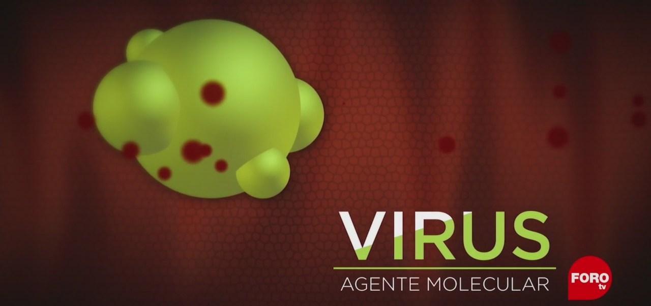 FOTO: La UNAM crea un virus artificial para tratar enfermedades, 10 noviembre 2019