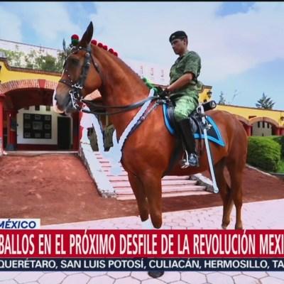 Más 400 caballos en el próximo desfile de la Revolución Mexicana