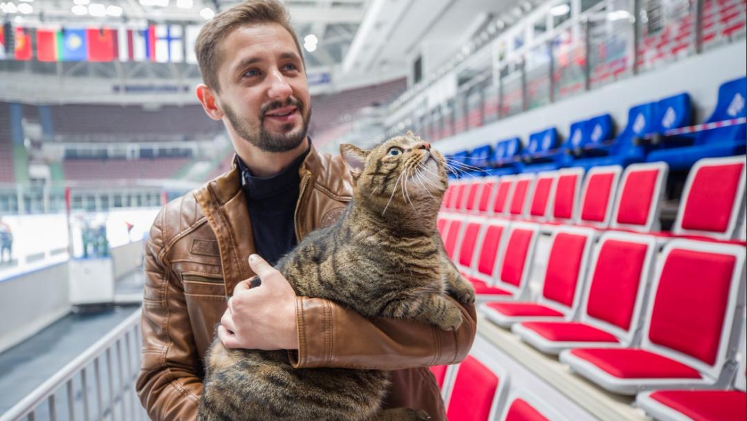 Víktor, un gato 'gordito', engaña a aerolínea y viaja como polizón