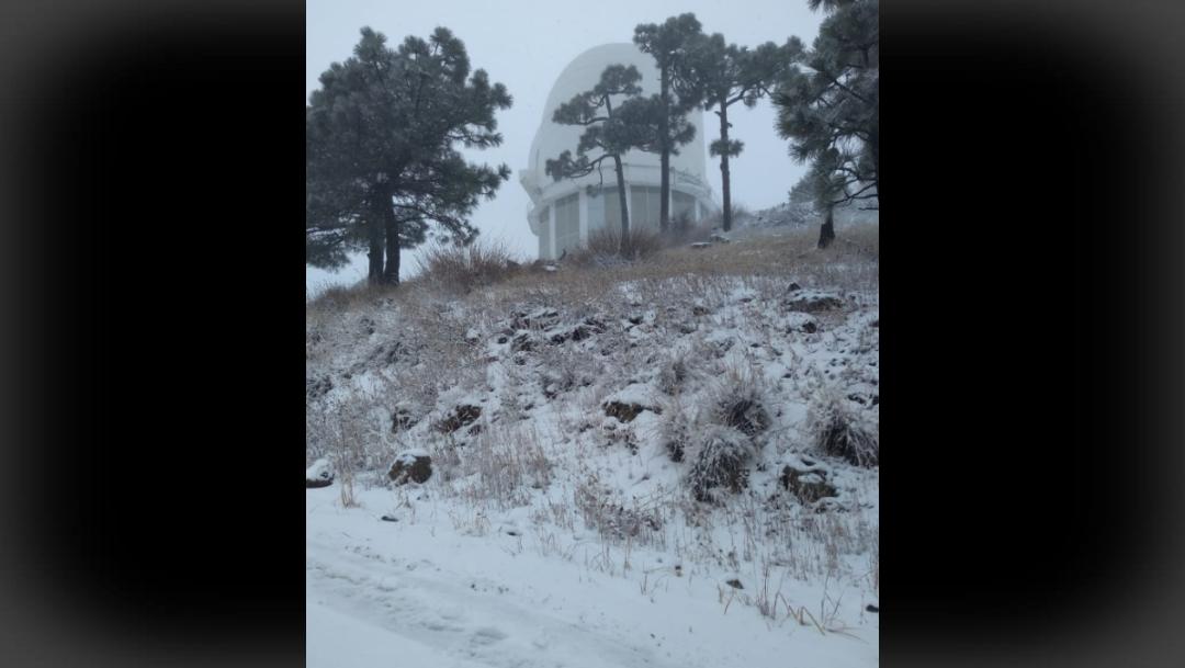 FOTO Primera nevada de la temporada cae en sierra de Cananea (Twitter)