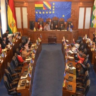 Senado aprueba ley para celebrar nuevas elecciones en Bolivia