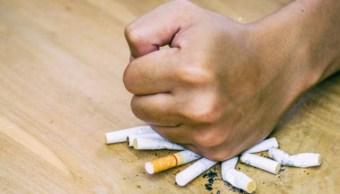 Imagen: Los resultados fueron consistentes tanto en casos de tabaquismo de larga duración como en los de nuevos fumadores