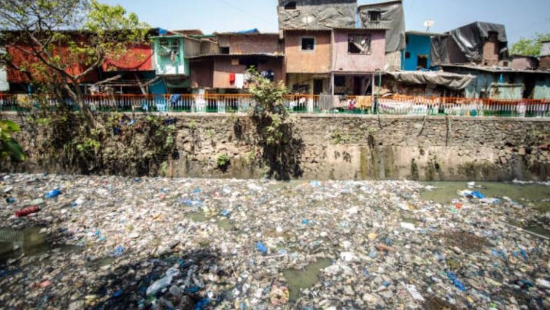 Imagen: De acuerdo con datos de la organización ambientalista Greenpeace, dos tercios de los ecosistemas marinos están afectados por el cambio climático y la sobrepesca