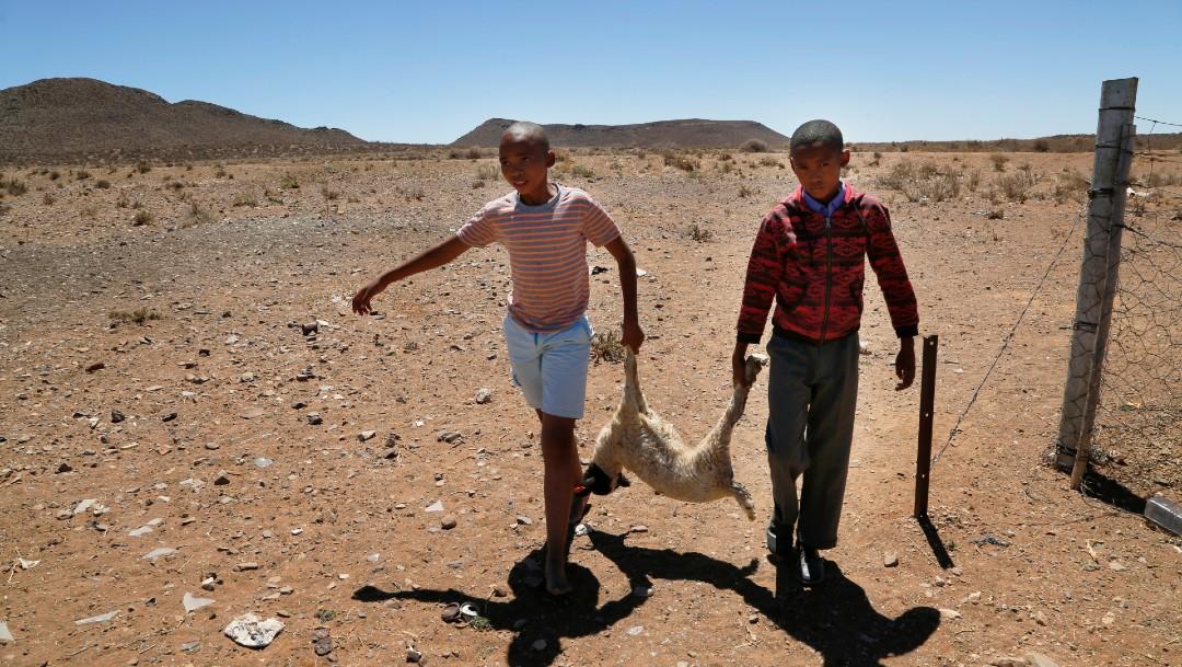 El hambre por sequía amenaza 11 millones de vidas en África