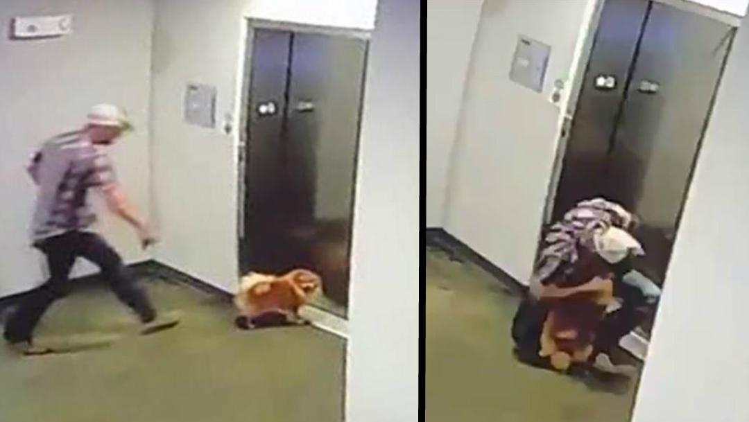 perro-estrangulado-rescate-animal-elevador-correa-perro