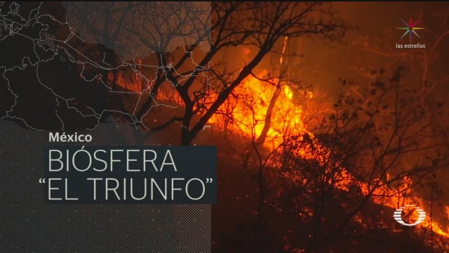Foto: En Punto Recuento Efectos Cambio Climático 2019 25 Diciembre 2019