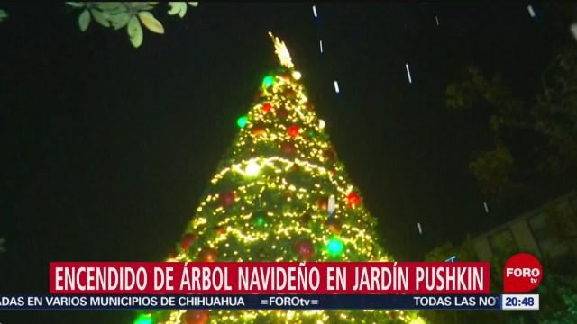 Foto: Encienden Árbol Navideño Jardín Pushkin 10 Diciembre 2019