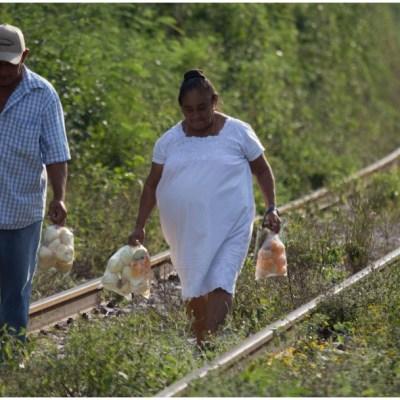 Semarnat realizará consulta en 167 comunidades indígenas por construcción del Tren Maya