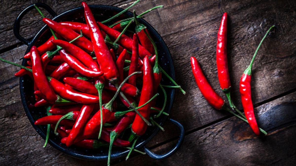 Foto: Chiles rojos en un tazón. Getty Images/Archivo