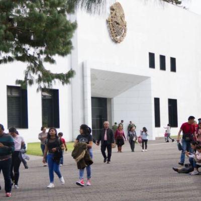 Tendido de libros en Los Pinos ofrecerá ejemplares desde 9 pesos
