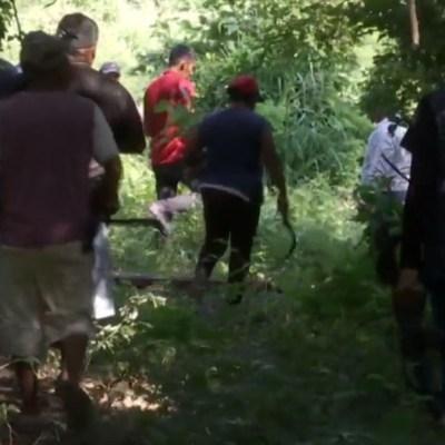 Reforestan y plantan en zonas taladas por crimen organizado