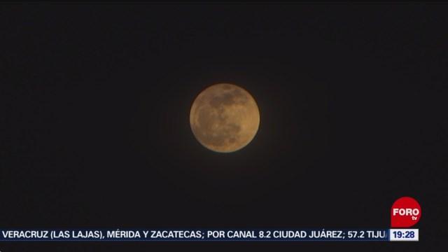 Foto: Luna Fría Engalana Cielo Noche 11 Diciembre 2019