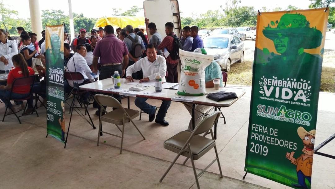 Foto: Transparentará AMLO padrón de beneficiarios de programas sociales