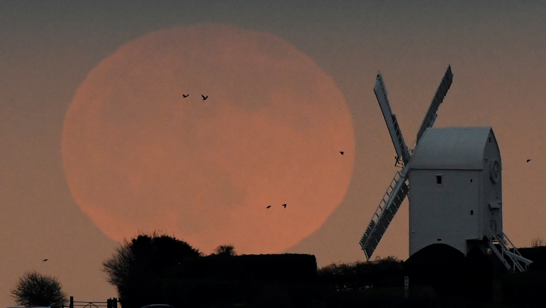 Foto: La Luna llena en Brighton, Reino Unido, 09 de enero de 2020, (Reuters)