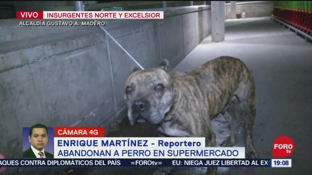 FOTO: 4 enero 2020, abandonan a perro pitbull supermercado