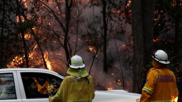 Foto: Critican celebración con pirotecnia en Sydney cuando viven crisis por incendios forestales, 1 de enero de 2020, (AP)
