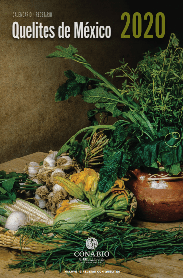 Pápalo, Romeritos y quelites en peligro por bajo consumo