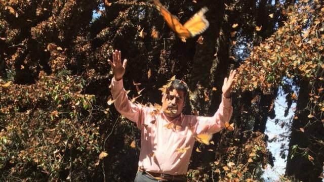 Foto Cadáver de activista de mariposa monarca fue hallado en olla de agua artesanal, 31 de enero de 2020, (Twitter @elgatomontes, archivo)