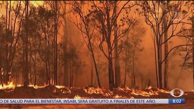 impacto de los incendios en australia y amazonia