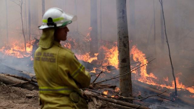 Fuertes-lluvias-incendios-forestales-apagar-fuego-Australia