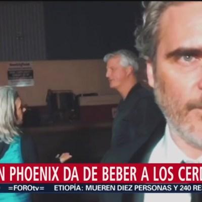 Joaquin Phoenix, en defensa de los cerdos