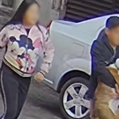 Video: Pareja roba perro bulldog en la colonia Roma