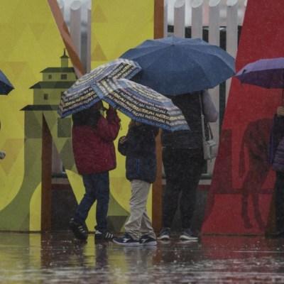 Foto: Un grupo de personas se protege de la lluvia que cae en algunos estados de México, 25 enero 2020