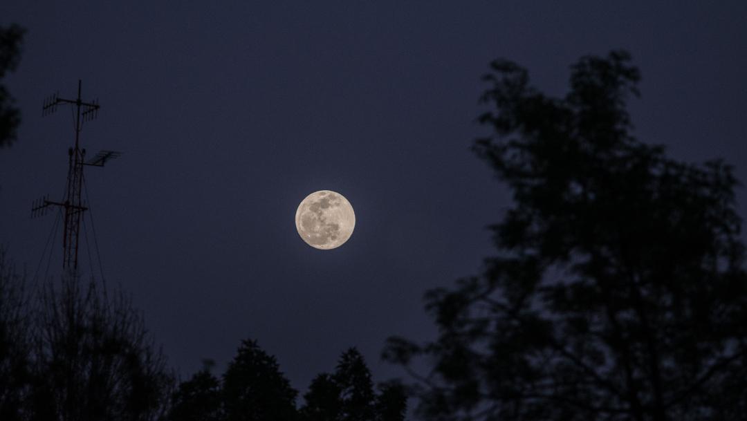 Foto: La Luna desde el Centro Histórico de la Ciudad de México, 09 de enero de 2020, (ANDREA MURCIA /CUARTOSCURO.COM)