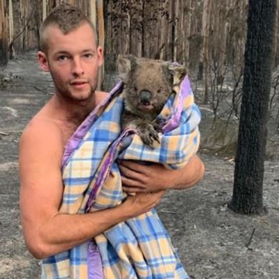 Cazador rescata koalas en Australia y se vuelve viral