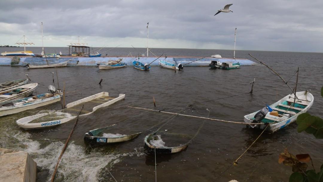 Imagen: Los puertos de los recintos pesqueros de Isla Aguada, Palizada, Nuevo Campechito, Sabancuy, Atasta, Champotón, Campeche y Seybaplaya, fueron cerrados