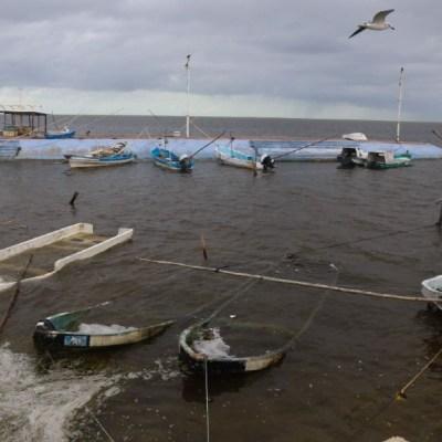 Fuertes vientos detienen pesca en Campeche
