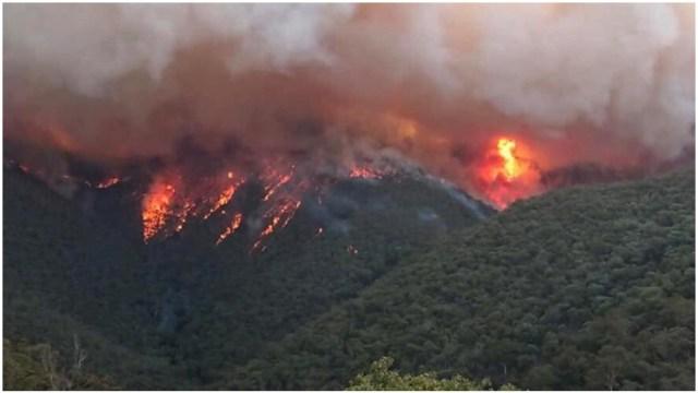 Imagen: La cantante Pink hará un fuerte donativo para combatir los incendios en Australia, 4 de enero de 2020 (EFE)