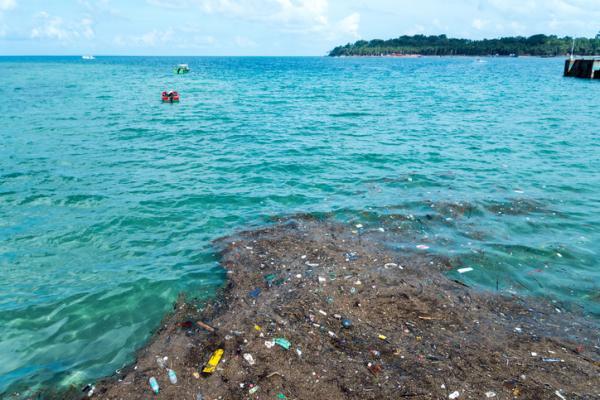 Foto Playa en Sinaloa concentra la mayor cantidad de microplásticos del país, 09 de enero de 2020, (EcologíaVerde.com)