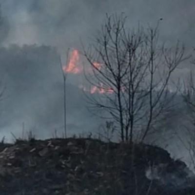 Desalojan a 15 personas por incendio en pastizales en Lomas de Tarango, CDMX