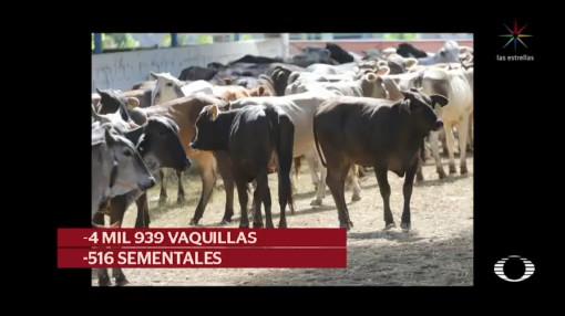 Foto: Narciso Mena Garcia, Ganadero Fantasma Defrauda Productores Agropecuarios 13 Febrero 2020