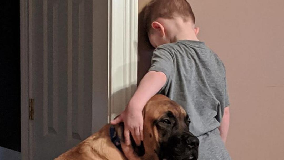 FOTO: Perro acompaña a niño en su castigo contra la pared, el 27 de febrero de 2020