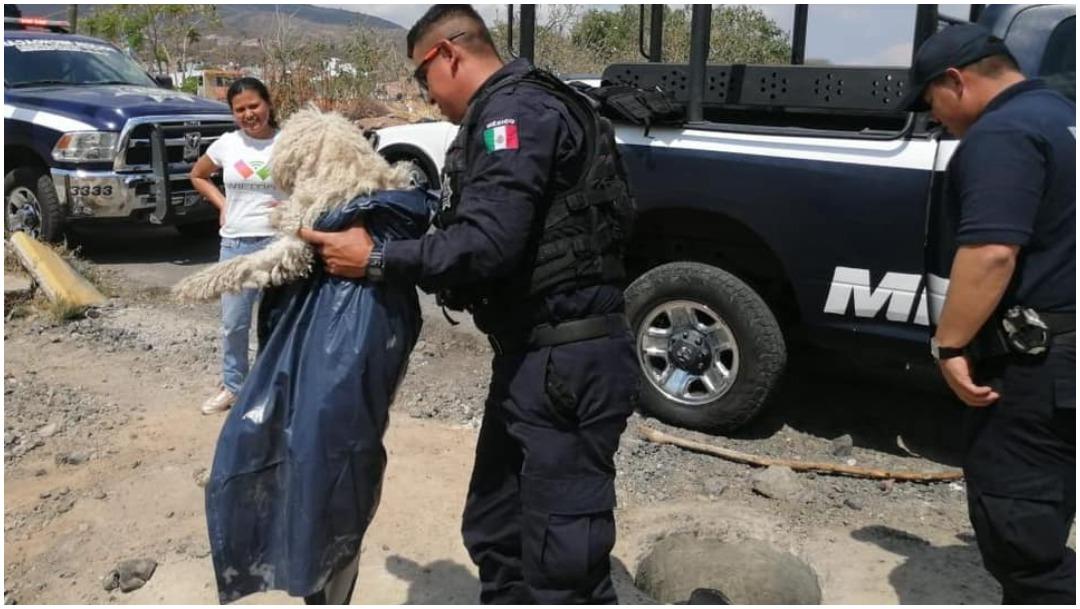 Foto: Policías salvaron a un perro que cayó en alcantarilla, 23 de febrero de 2020 (Facebook)