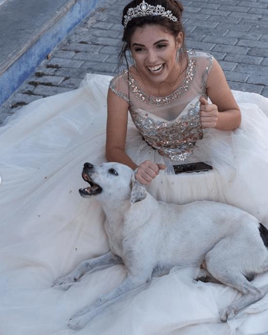 Foto Perro callejero se vuelve viral por colarse en fotos de quinceañera 21 febrero 2020