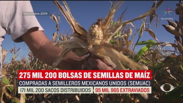 Foto: Sfp Halla Irregularidades Compra Semilla Fertilizantes Maíz 19 Febrero 2020