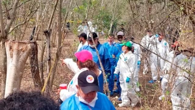 Foto: Los predios fueron hallados en el municipio Bahía de Banderas. Efe