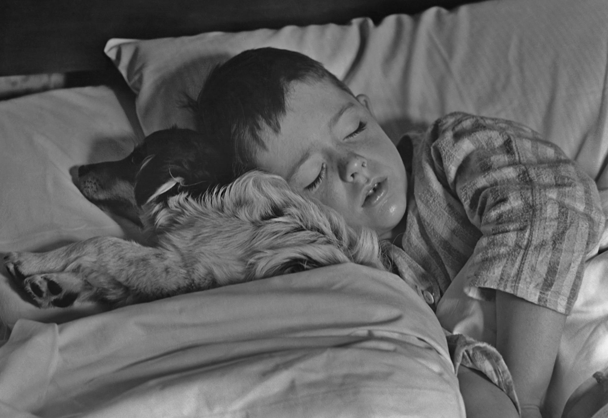 Foto Día Mundial del Sueño: Un recordatorio sobre la importancia de dormir bien 5 marzo 2020