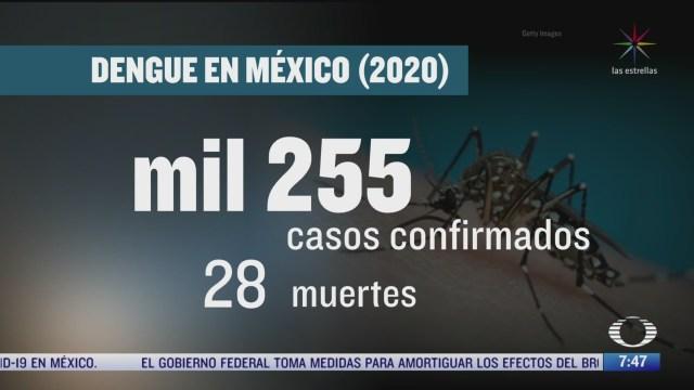 se han confirmado mil 255 casos de dengue en mexico durante